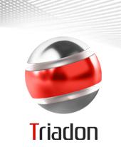 triadon1_01.jpg (17141 байт)